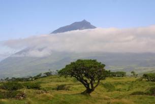 Azores: Isla de Terceira 8 noches desde Madrid