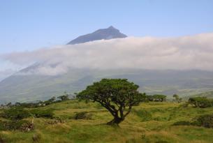 Azores: Isla de Terceira 8 noches desde Bilbao