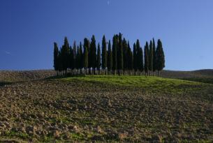 Semana Santa en la Toscana en familia y a tu aire en coche de alquiler