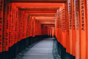 Tokio, Kioto, Hiroshima y Osaka las grandes gigantes de Japón a tu aire 14 días