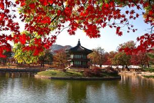 Japón y Corea en grupo especial singles