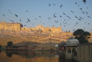 India en grupo en el puente de Todos los Santos