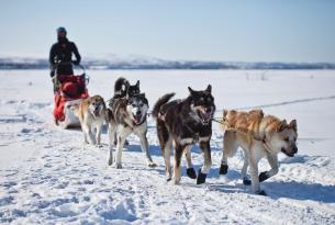 Fin de año: Aventura ártica en Rovaniemi