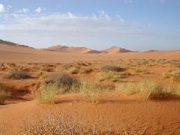 Gran Ruta Por El Desierto